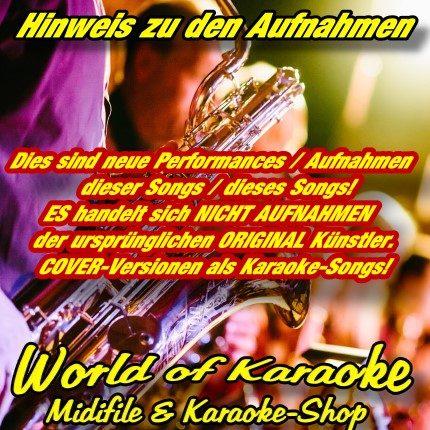 Sunfly Karaoke Hits Volume 304 Monats-Hits Juni 2011